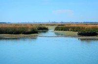 barene in Laguna di Venezia